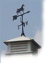 Weather Vane on Main Street